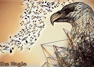 An Eagles Focus