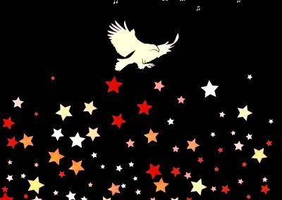 In the stars.